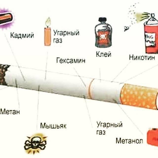 Как курение влияет на мозг и с чем связано действие никотина | rusmeds