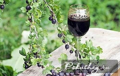 Вино из крыжовника в домашних условиях - 4 лучших рецепта