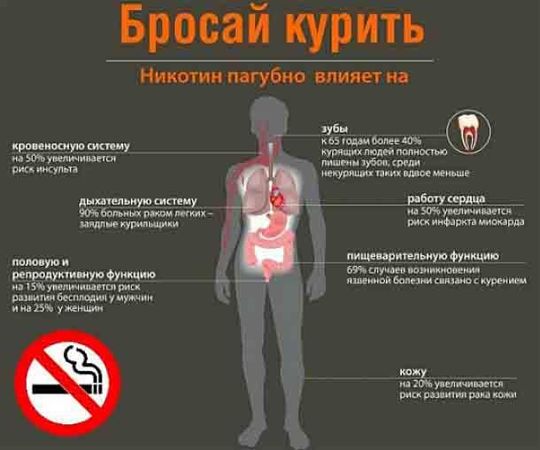 Гангрена. причины, симптомы, диагностика и лечение патологии :: polismed.com