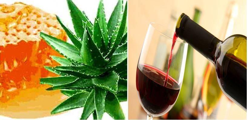 Рецепты из алоэ вера для лечения суставов и геморроя, приготовление настойки на спирту в домашних условиях, свойства лекарств народной медицины, и что с ними делать?