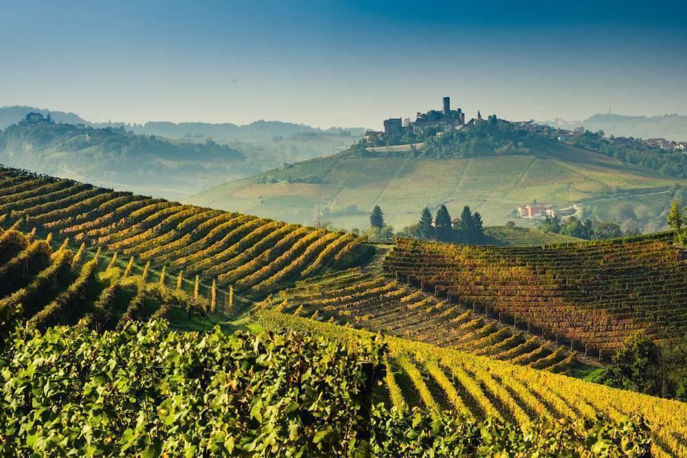 Архив метки: тоскана винодельческие зоны