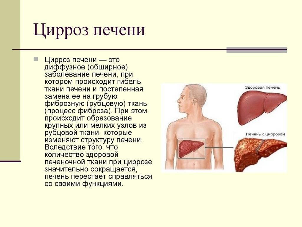 Печень, желудок и сердце: есть ли польза в субпродуктах // нтв.ru
