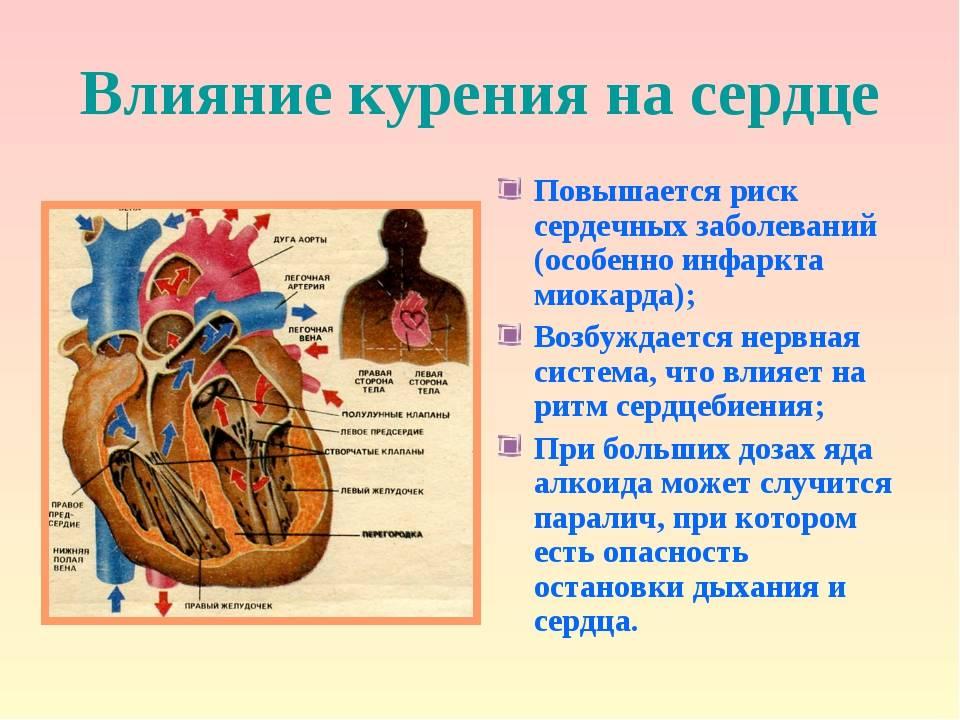 Бросил курить - болит сердце