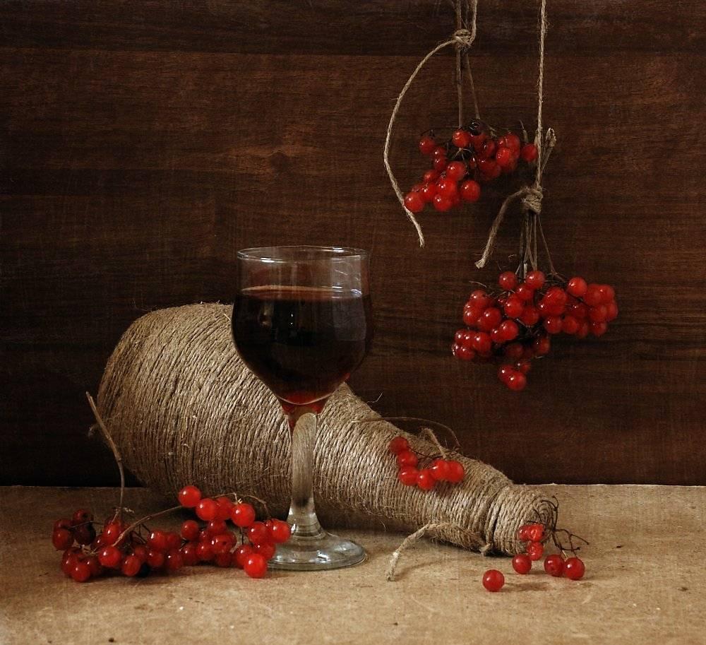 Как сделать вино из калины: простой рецепт приготовления в домашних условиях