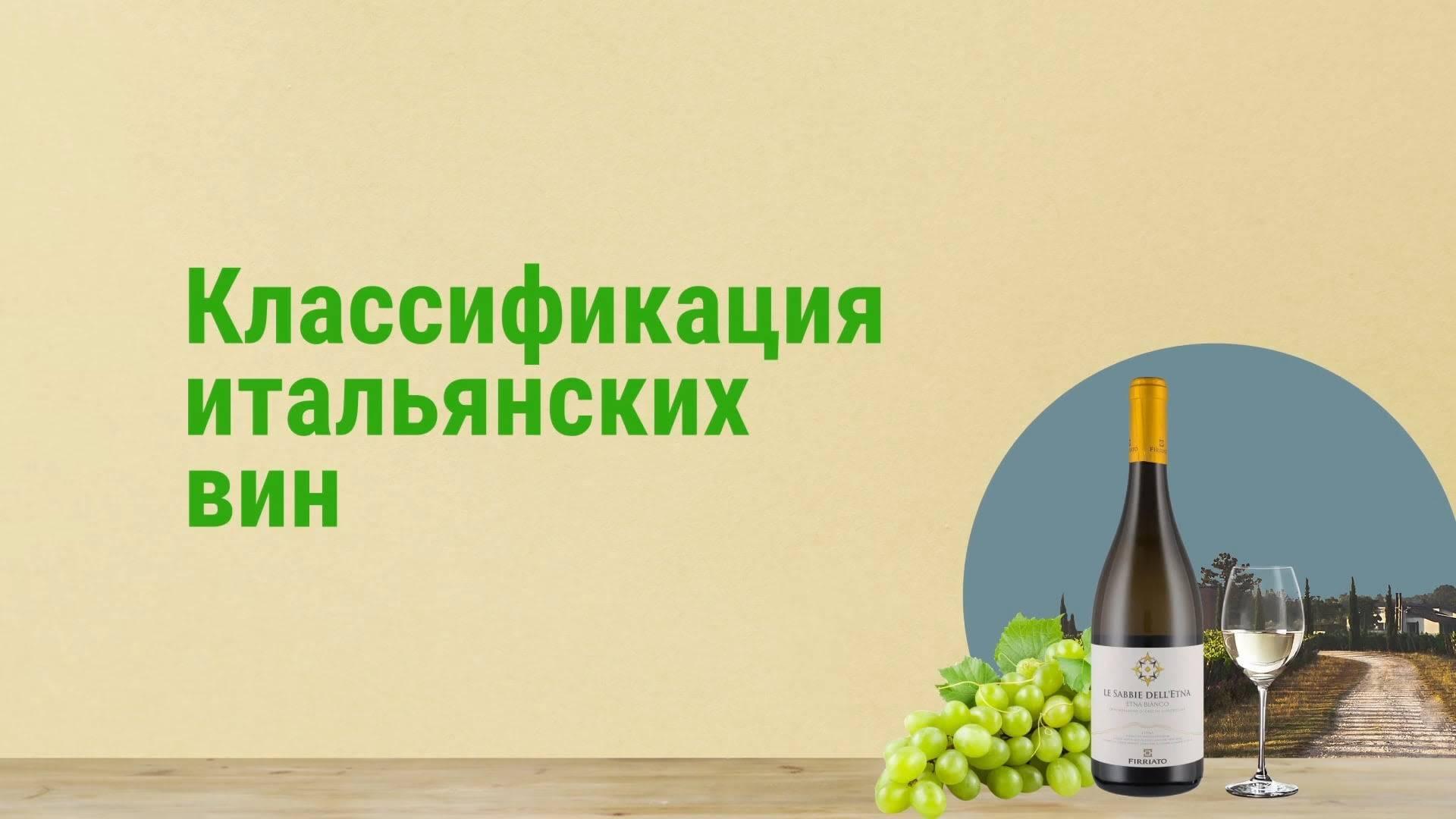 Классификация вин по происхождению   просто отдохнуть   яндекс дзен