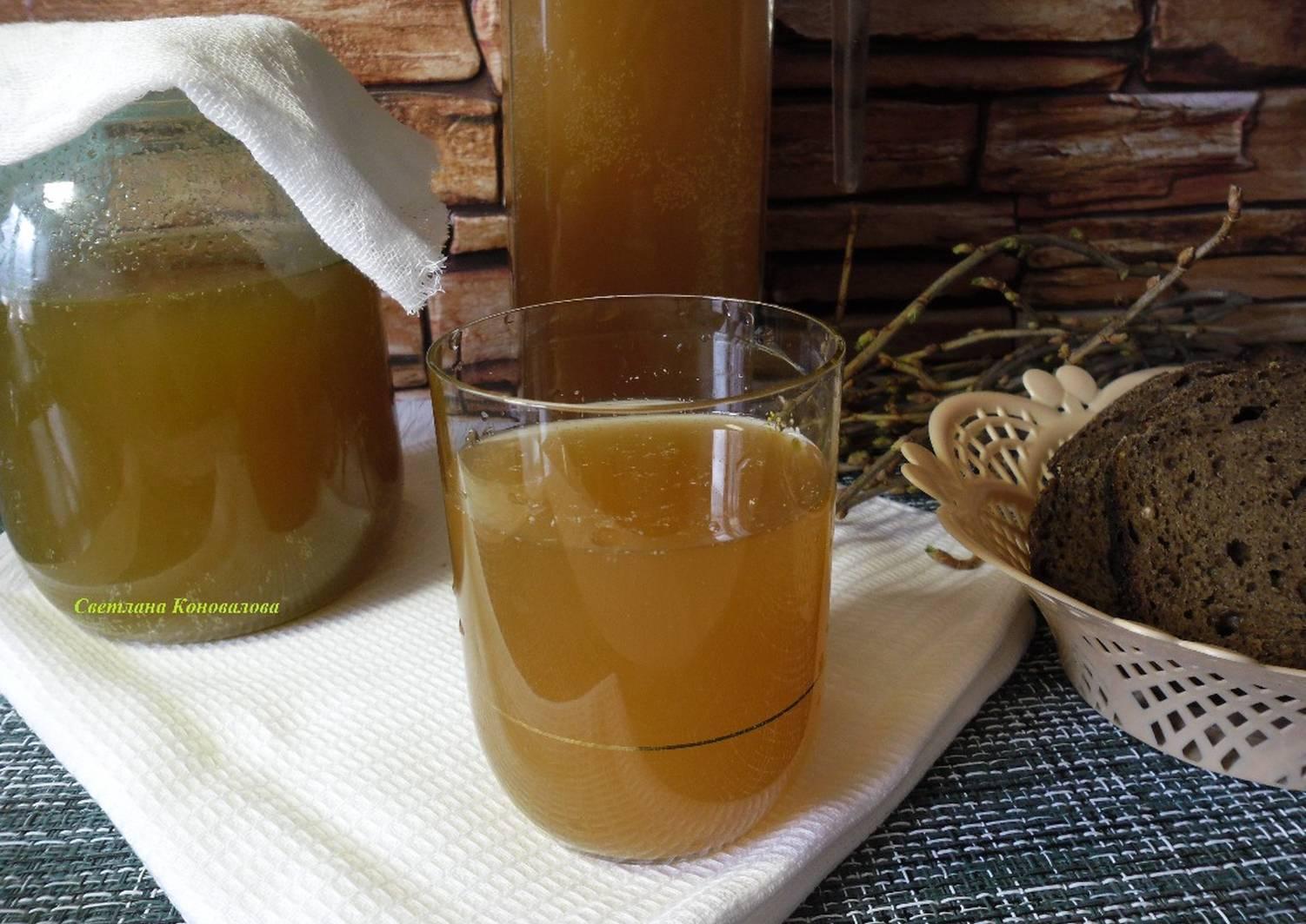 Как приготовить квас в домашних условиях - лучшие рецепты кваса ржаного, дрожжевого и на закваске – на бэби.ру!