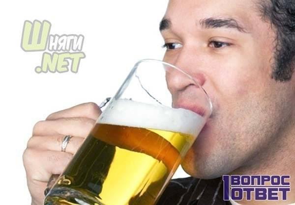 Что произойдёт с вашим телом, если каждый день пить пиво?
