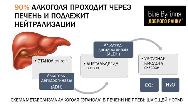 Алкоголь вырабатывается в организме человека. эндогенный алкоголь в организме в норме определяется в количестве. зачем подобное вещество нужно нашему организму