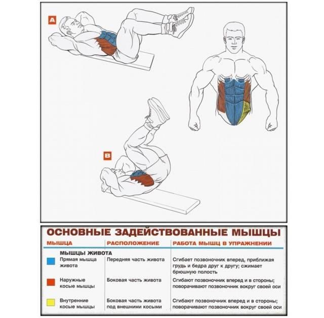 Как мужчине убрать живот и бока: лучшие упражнения и диета
