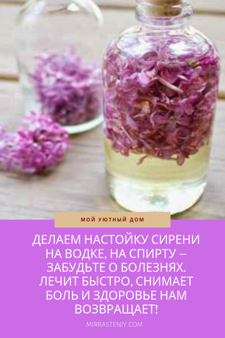Настойка из цветков сирени для суставов: на водке, на спирту, лечение, противопоказания