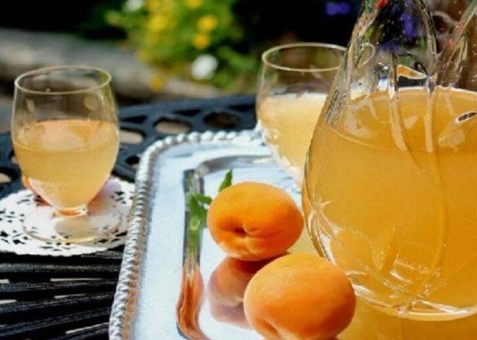Самогон из абрикосов: простые рецепты браги в домашних условиях, первая и вторая перегонка
