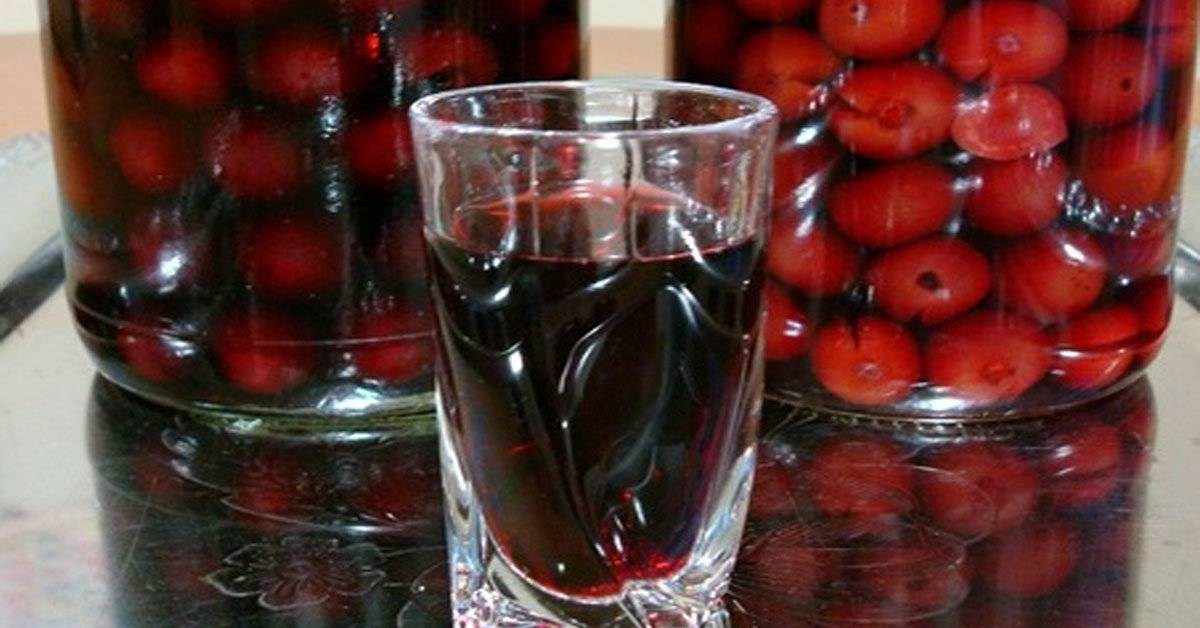 Cухое вино из винограда в домашних условиях