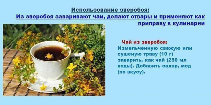 Настойка на зверобое на самогоне: польза и вред травы, рецепты приготовления в домашних условиях на водке и спирту