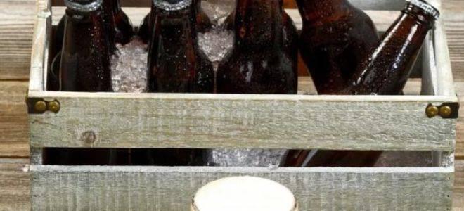 Каков срок годности пива — разливного, в пластиковых бутылках, в банках?
