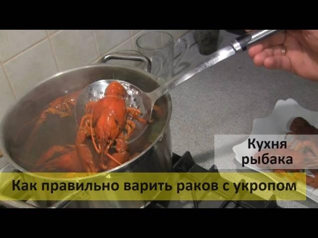 Узнайте рецепт как варить раков дома