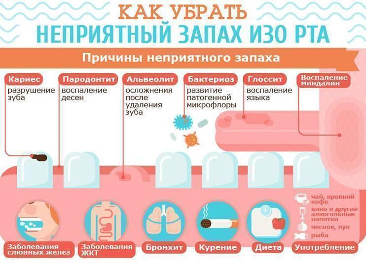 Чем перебить запах перегара - 30 простых, но действенных способов