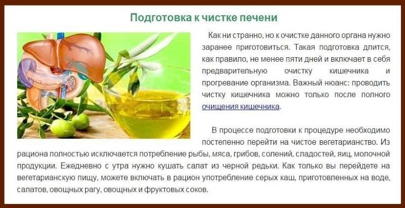 Как очистить печень от алкоголя быстро и эффективно в домашних условиях