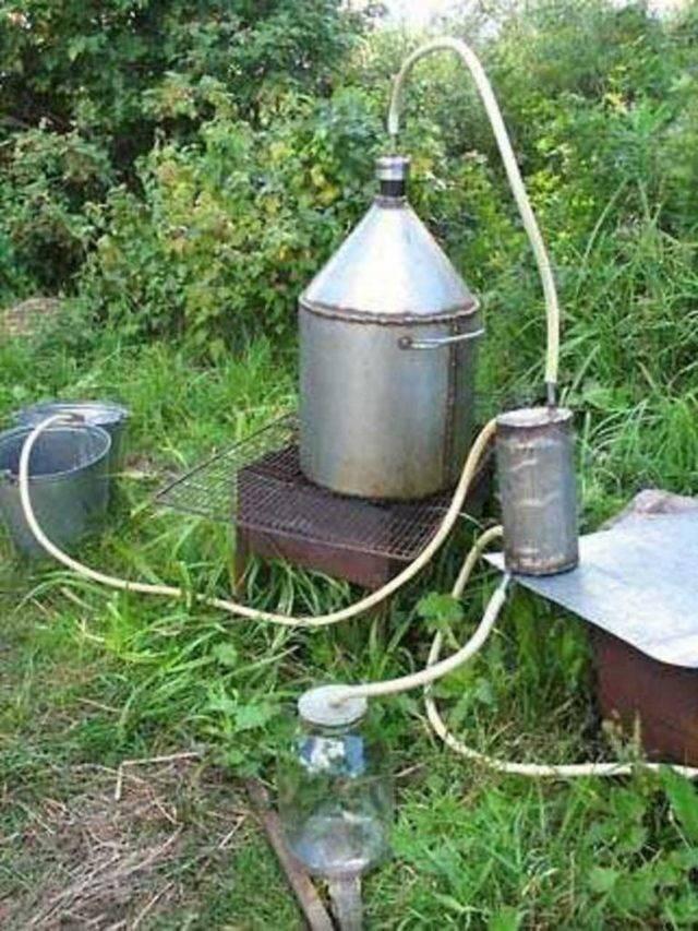 Нужная крепость самогона и методы ее определения без спиртометра. до скольки градусов гнать самогон, когда горит?