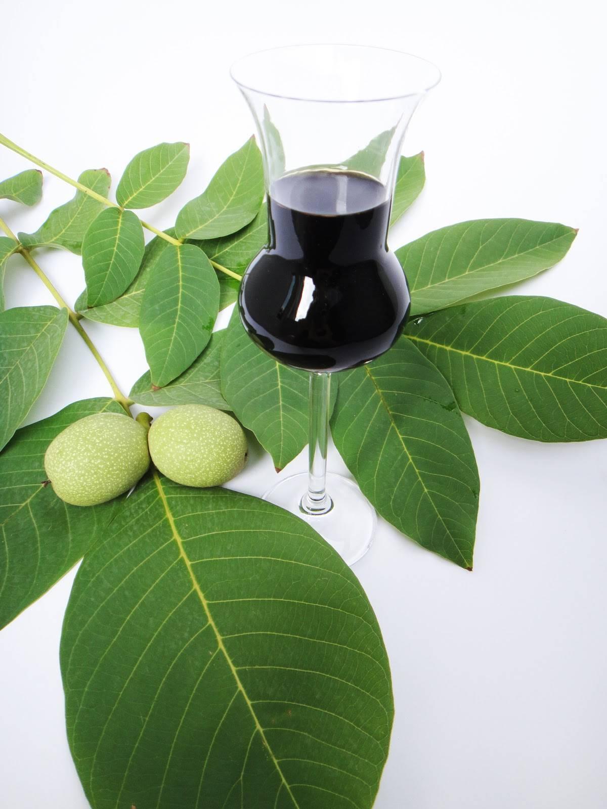 Ночино (nocino) – рецепт ликёра из зеленых грецких орехов