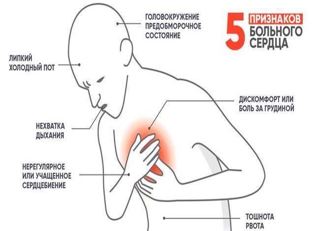 С похмелья болит сердце: что делать при возникновении сердечного тонуса