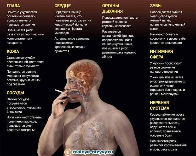 Курение и сердце: как привычка влияет на орган и сосуды и с чем связана боль после отказа