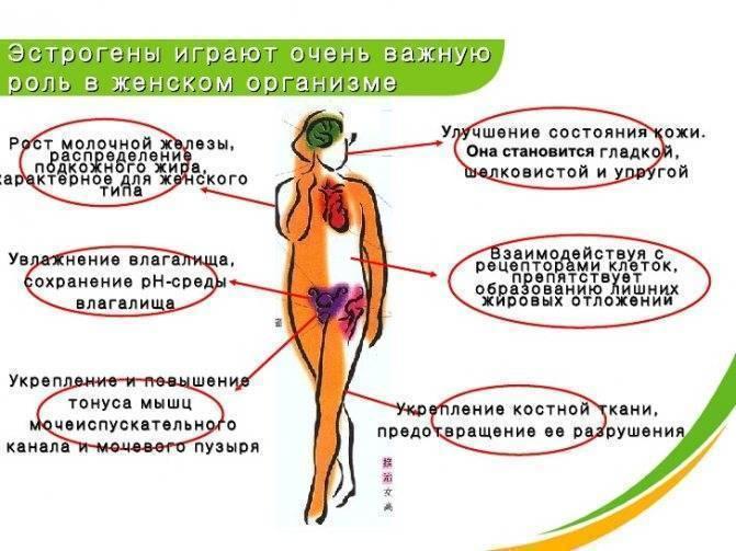 Чем эко опасно для здоровья женщины