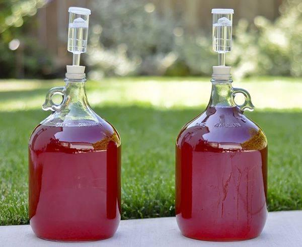 Остатки — в дело. как получить самогон из браги на виноградной мезге?