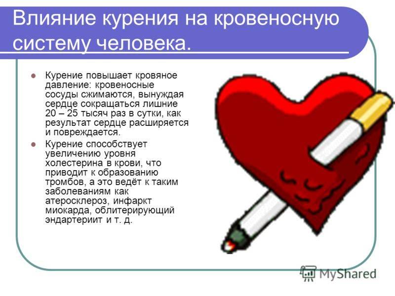 Влияние курения на сердечно-сосудистую систему: никотин сужает или расширяет сосуды, восстановление после отказа от сигарет