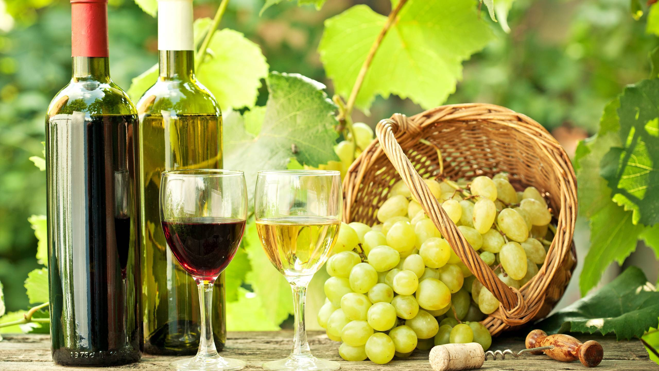 ✅ карбонизация вина в домашних условиях - питомник46.рф