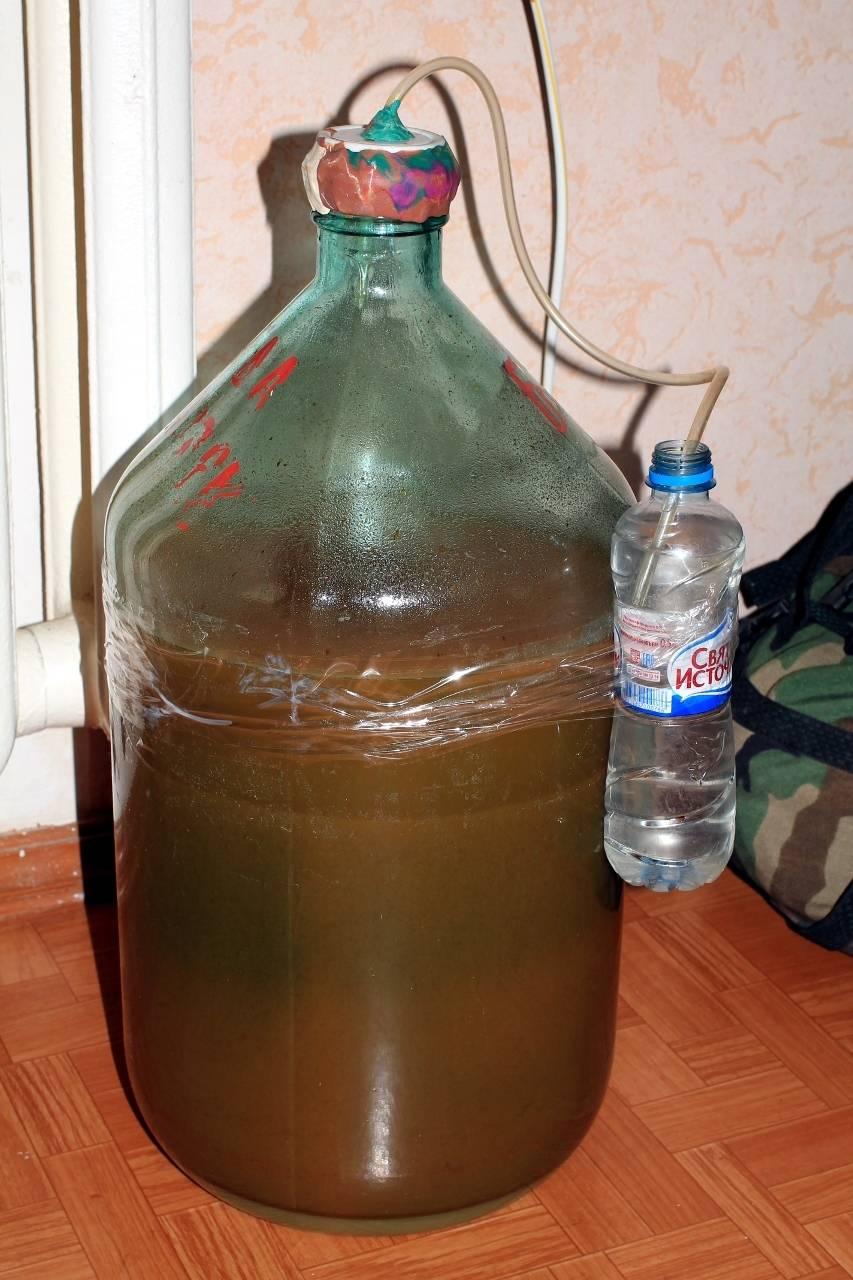 Яблочное вино в домашних условиях: простой рецепт с фото пошагово