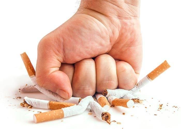 Трудно бросить курить? чем мы похожи на крыс и насекомых