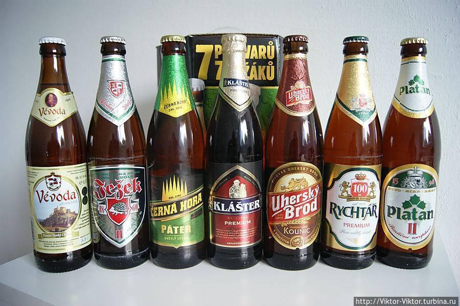 Краткая характеристика чешского пива