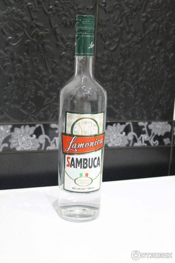 Самбука / typobar.ru