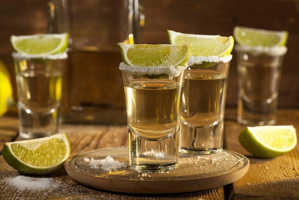 Учимся пить мексиканскую текилу правильно. как правильно пить текилу правильно — советы от барменов
