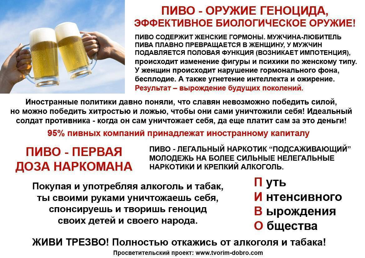 Вред пива на организм человека: почему нельзя пить