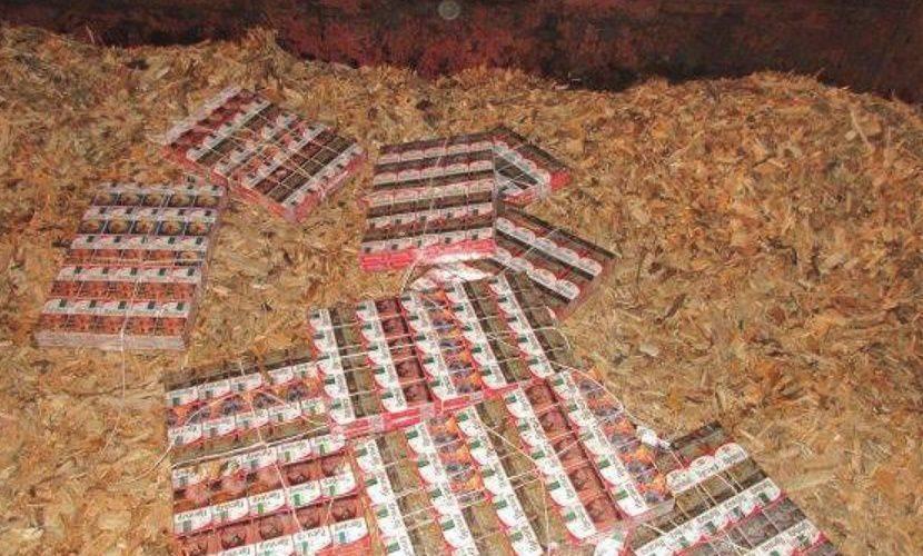 «Дело — табак»: как устроен черный рынок сигарет в Челябинске