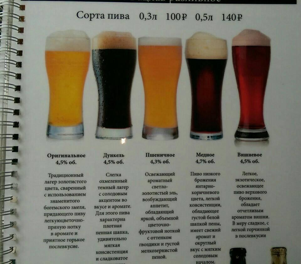 Многообразие видов, разновидностей и сортов пива - различия и характеристики, таблица крепости