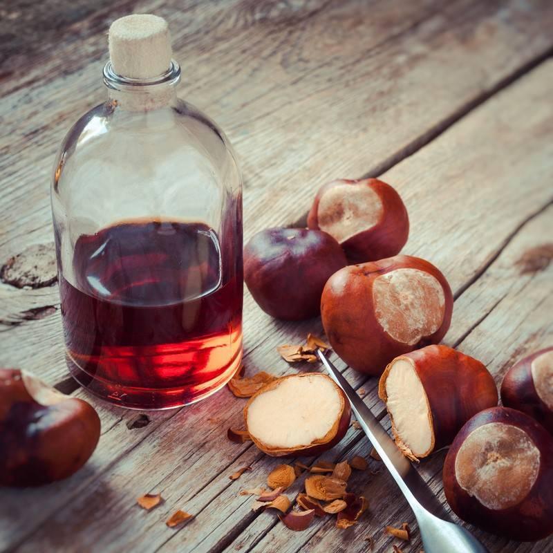 Рецепты приготовления самогона на дубовой коре