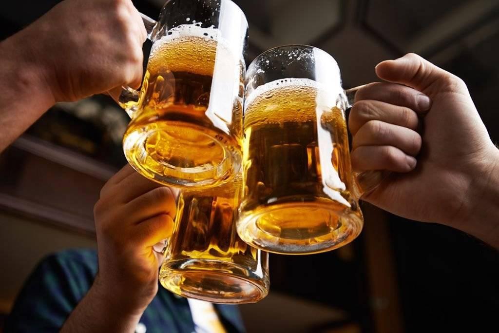 Как правильно пить пиво: с чем лучше всего и правильно попить напиток дома, варианты закусок с рыбой