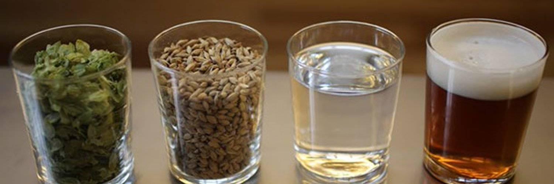 Пиво в домашних условиях: простые рецепты