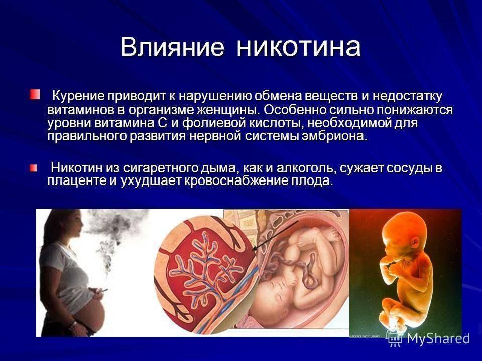 Имплантация при эко и имплантационное окно: поздняя имплантация и признаки, особенности