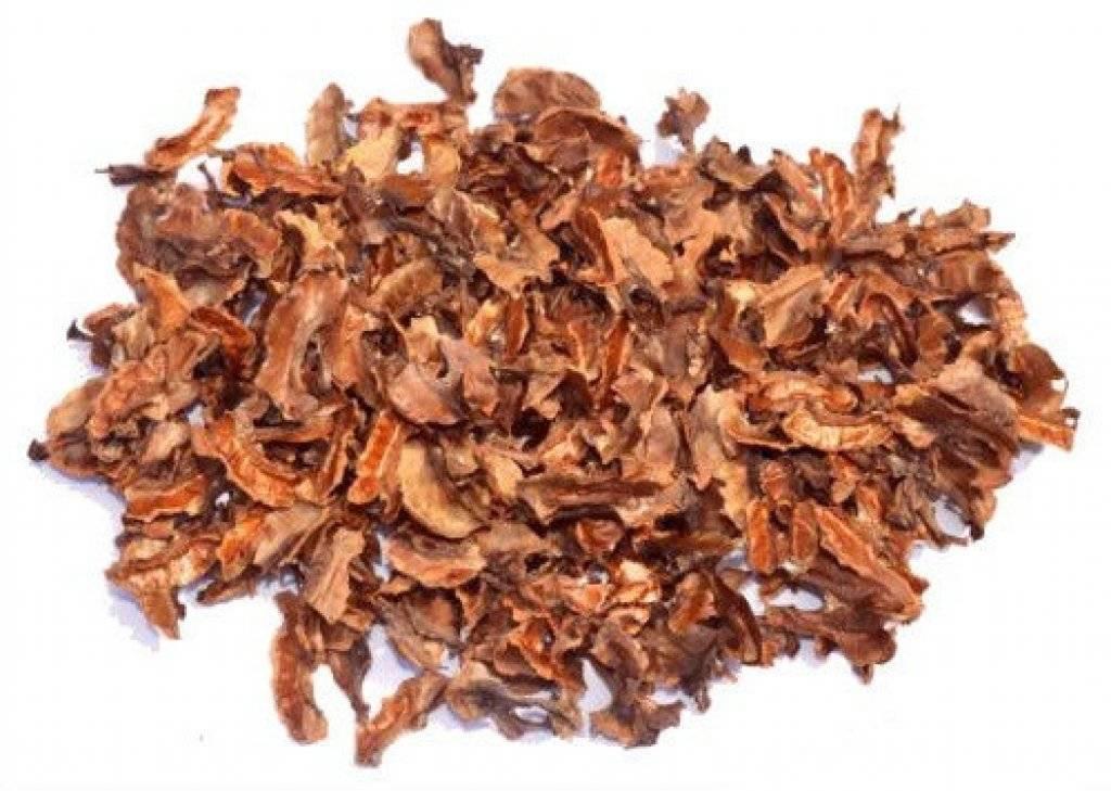 Перегородки грецких орехов: лечебные свойства и противопоказания, применение скорлупы, чем полезны перепонки на водке