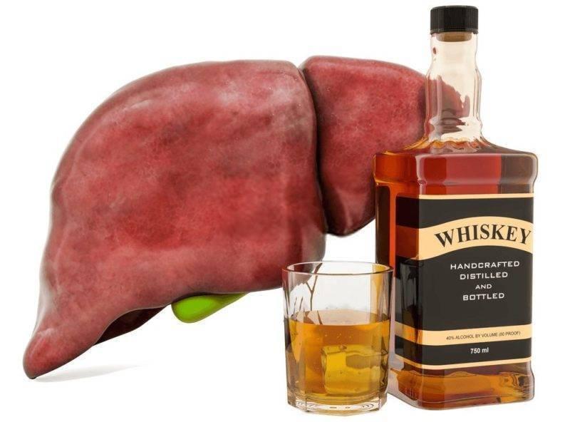 Лекарства для печени после алкоголя: витамины