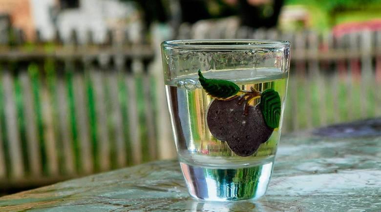 Турецкая водка ракы (раки): что за напиток, из чего состоит, сколько градусов, виды, как правильно пить