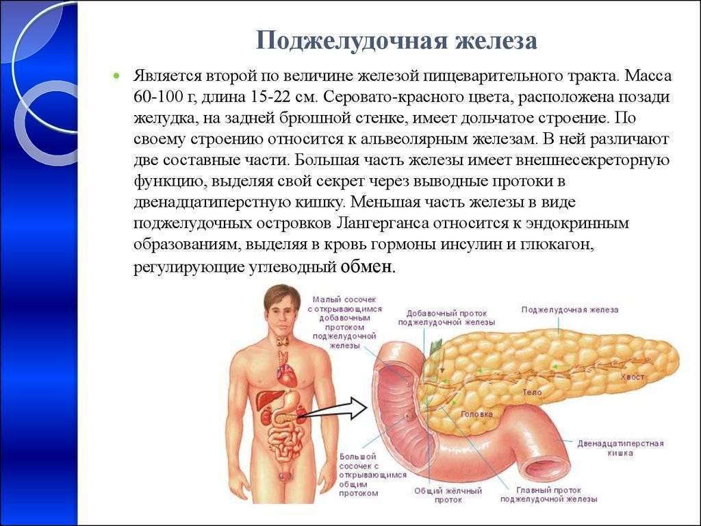 Влияет ли курение поджелудочную железу
