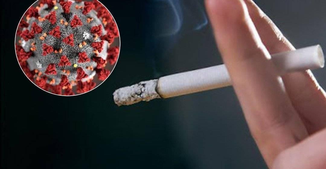 Почему после курения хочется в туалет «по большому»?
