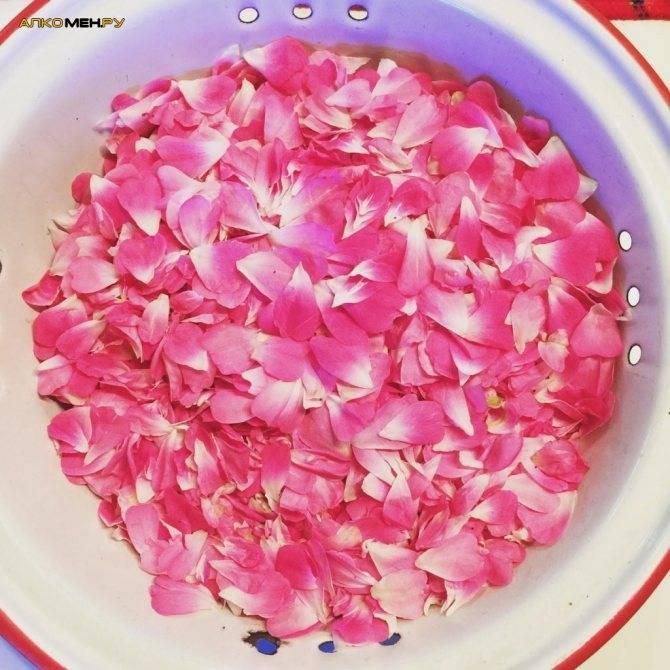 Что можно приготовить из лепестков роз – рецепты варенья, вина, настоек | дачная кухня (огород.ru)