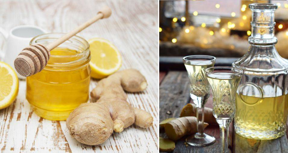 Три рецепта имбирной водки. полезные свойства и противопоказания