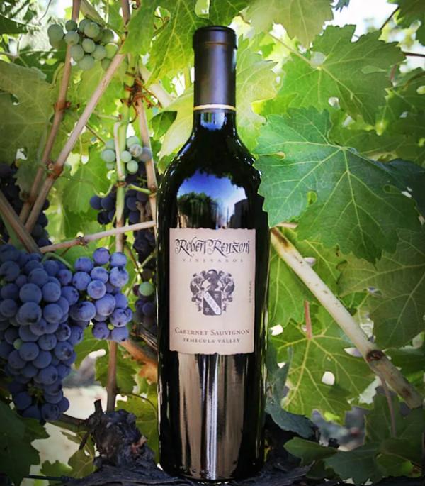 Итальянское вино санджовезе: описание аромата, отзывы  — нескучные домохозяйки