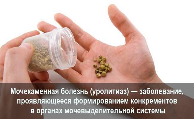 Можно ли пить алкоголь когда камни в почках - почки